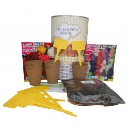 Kit de huerto infantil con semilleros, tierra turba, Espuela de Caballero, clavel gigante, y marcaje de semilleros