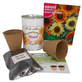 Kit de cultivo Girasol en lata